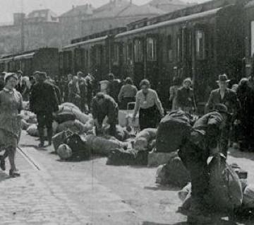 Der Auschwitz Erlass vom 16.12.1942 gegen Sinti & Roma