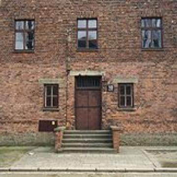 """Perfide Medizin"" in Auschwitz"