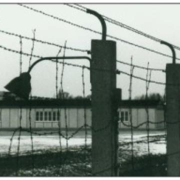 Medizinische Versuche im Konzentrationslager Dachau