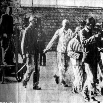 Sinti & Roma · Auschwitz Erlass · Erlebnisse Überlebender