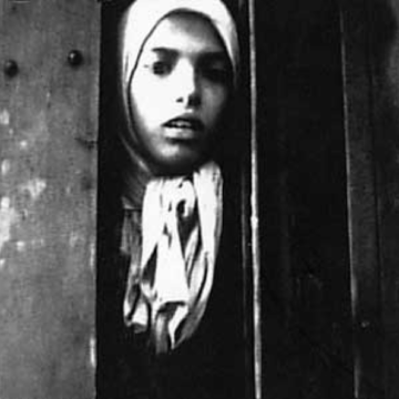 Ermordung der Sinti und Roma in Auschwitz